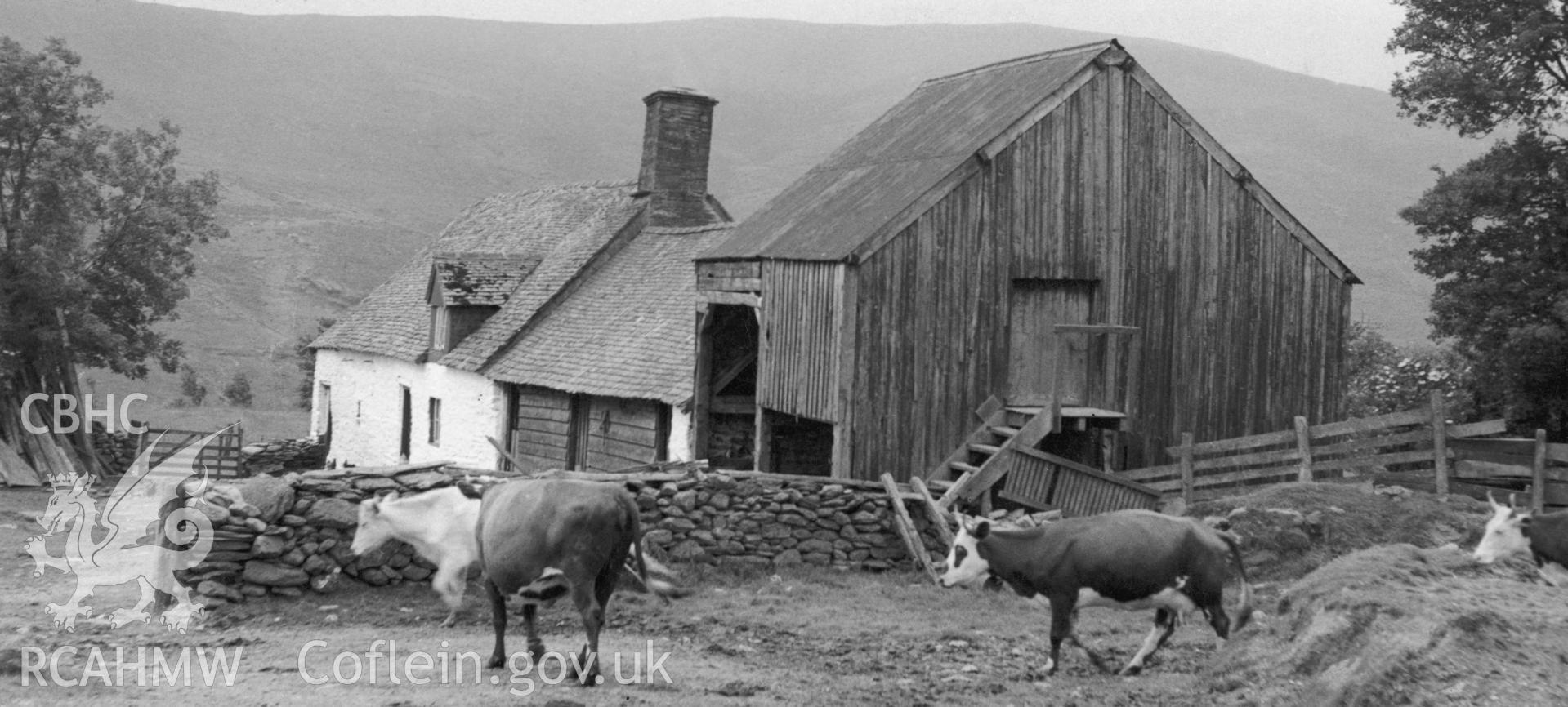 View of Cil-Oerwynt Farmhouse taken by Miss M. Wight circa 1954.