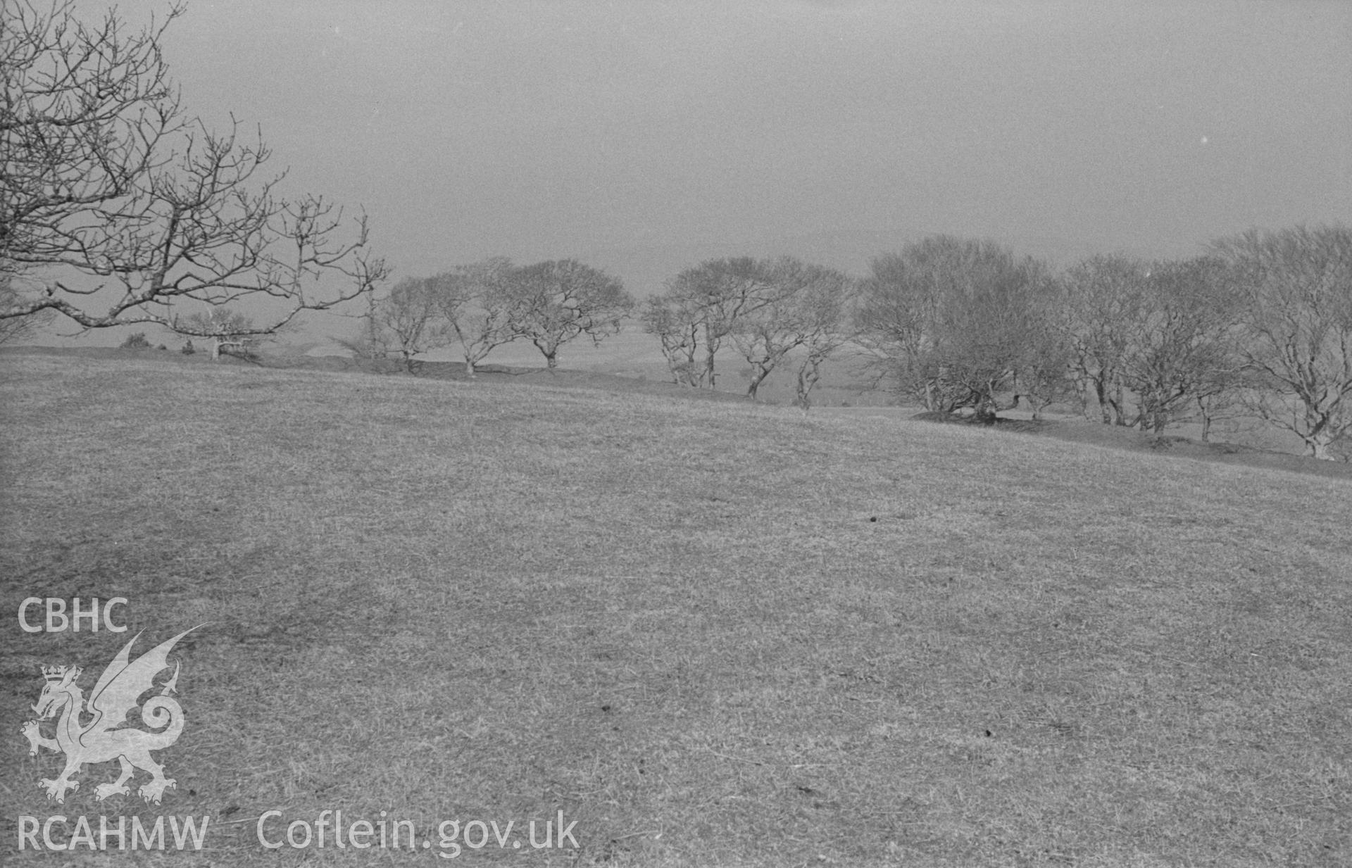 Digital copy of a black and white negative showing view from the west ramparts of Hen Gaer, Tirymynach, showing the east ramparts crowned by trees. Photographed in April 1963 by Arthur O. Chater from Grid Reference SN 6328 8435, looking east.