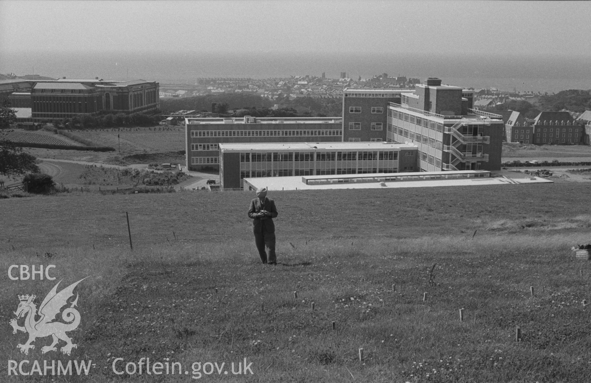 Black and White photograph showing University College Wales grass plots at Penglais, Aberystwyth, with National Library and the University's Physical Sciences building in the background. Photographed by Arthur Chater, August 1962. Grid reference: SN597818.